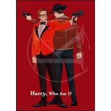 千風《Harry, Who Am I?》哈蛋小說